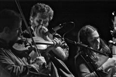 Black Twig Pickers live at Buchanan Memorial Hall – pic © Loch Lomond Studios / Dave Arcari